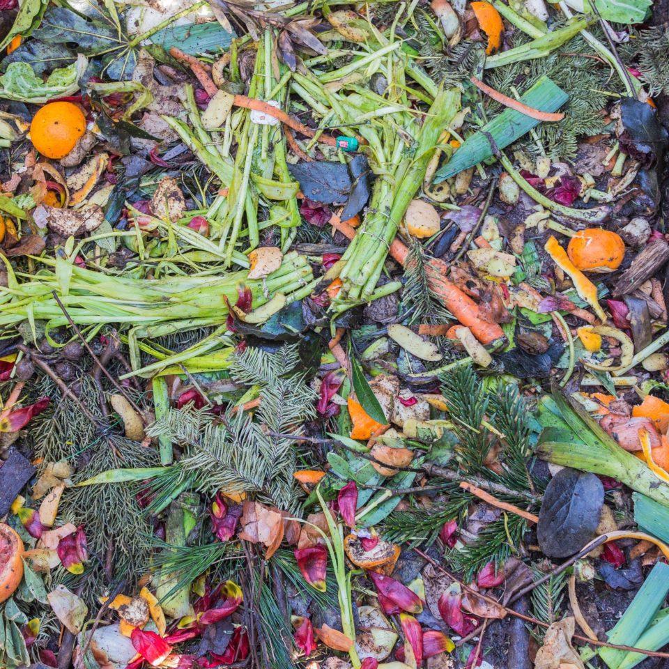 Atemberaubend Küche Kompost Crock Bewertung Galerie - Ideen Für Die ...