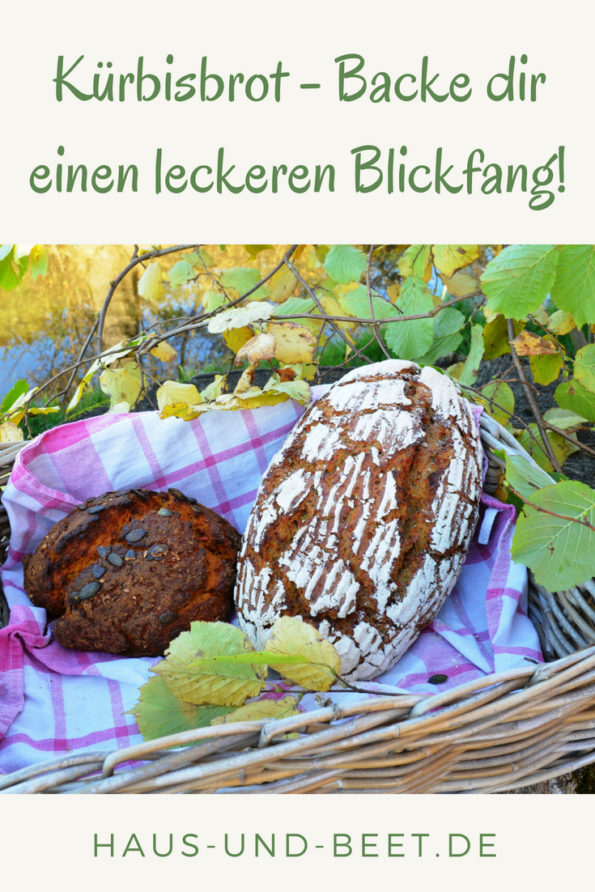 Kürbisbrot backen