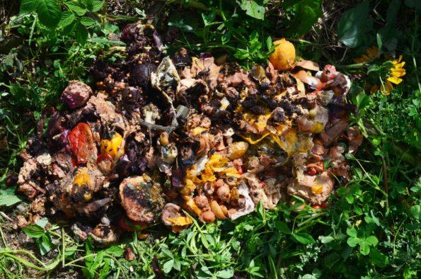 Kompost Bokashi für den Garten im Winter
