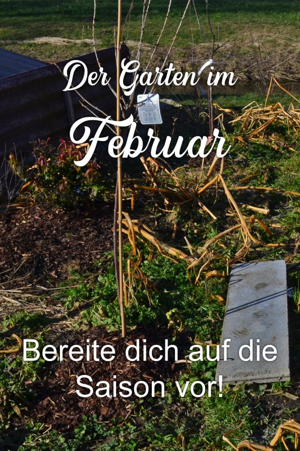 Garten im Februar