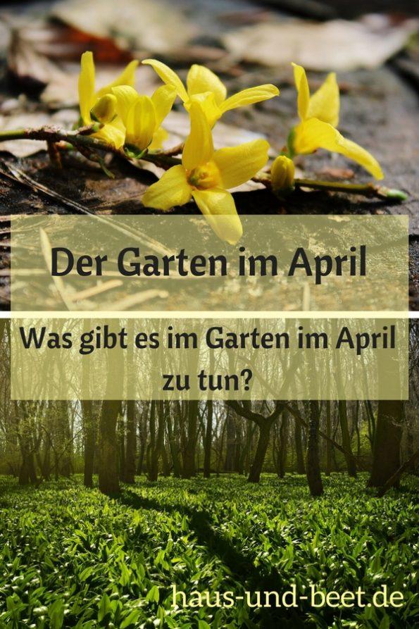 Der Garten im April