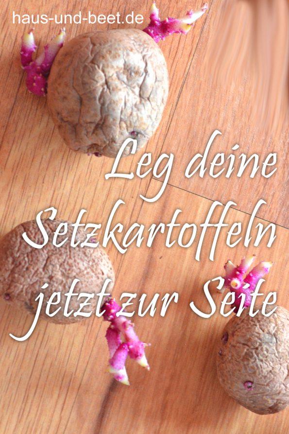 Kartoffeln pflanzen so gelingt dir eine reiche ernte for Wann kartoffeln pflanzen