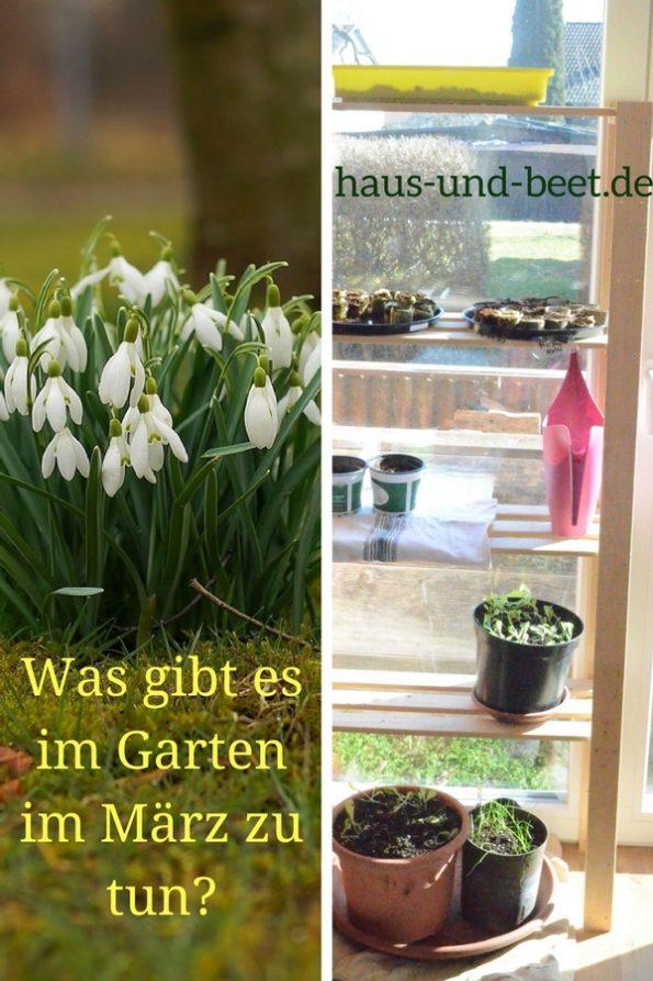 Was gibt es im März im Garten zu tun