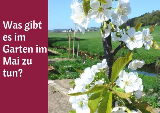 Garten im Mai Titel