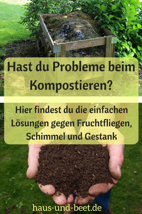 Probleme beim Kompostieren Pinterest