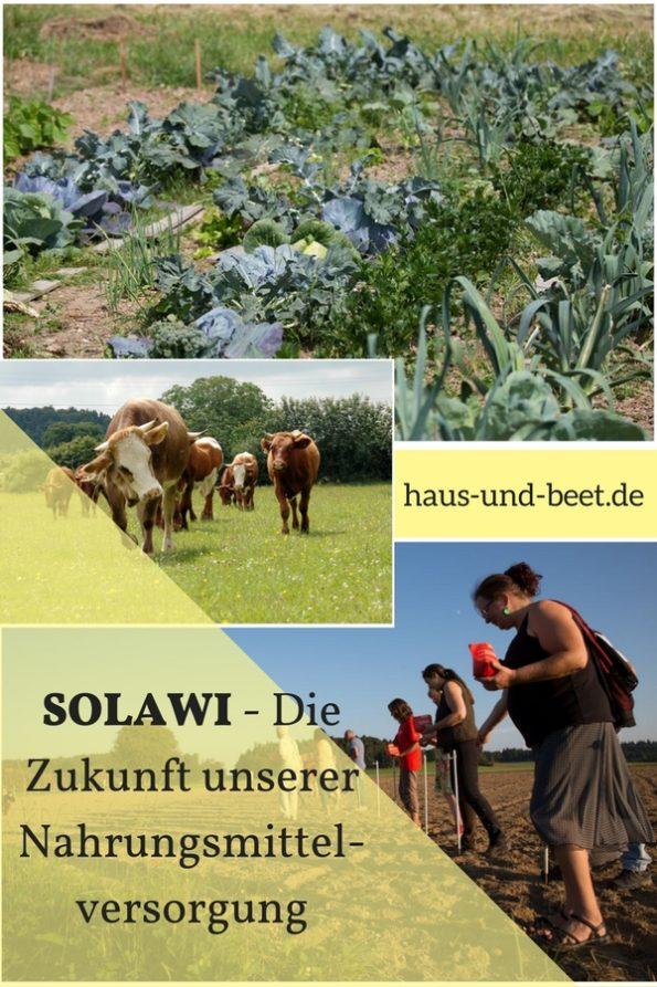 SOLAWI - Die Zukunft unserer Nahrungsmittelversorgung Pinterest