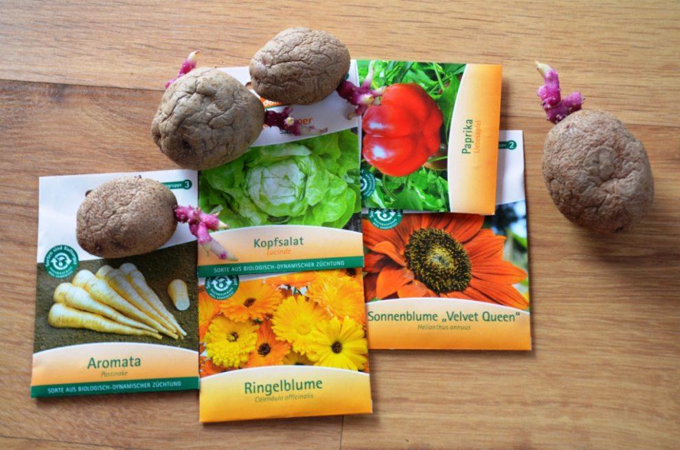 Pflanzplan für Gemüse