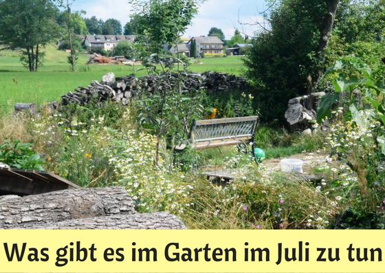Was gibt es im Garten im Juli zu tun