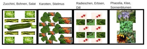 Gemüsebeet anlegen ideen