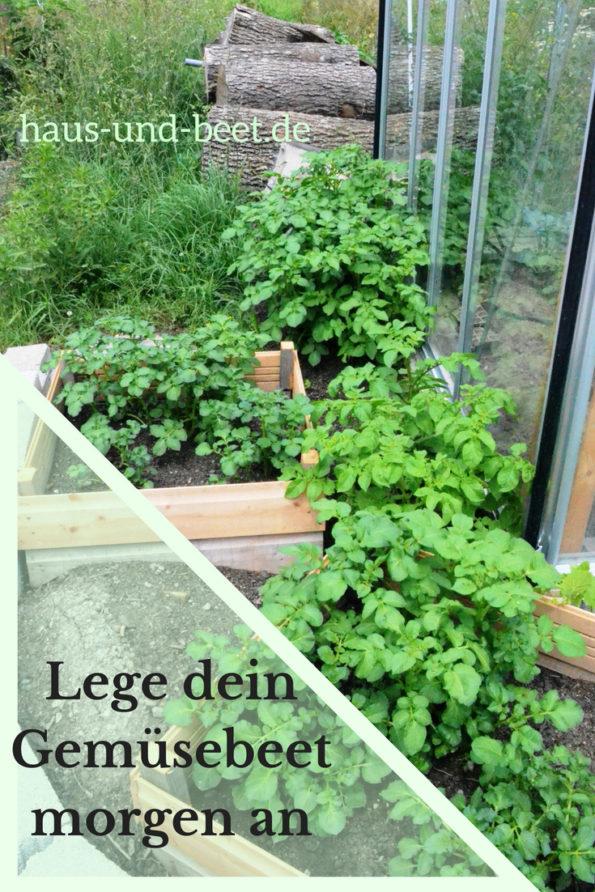 Lege dein Gemüsebeet morgen an, trotz wenig Erfahrung - Haus ...