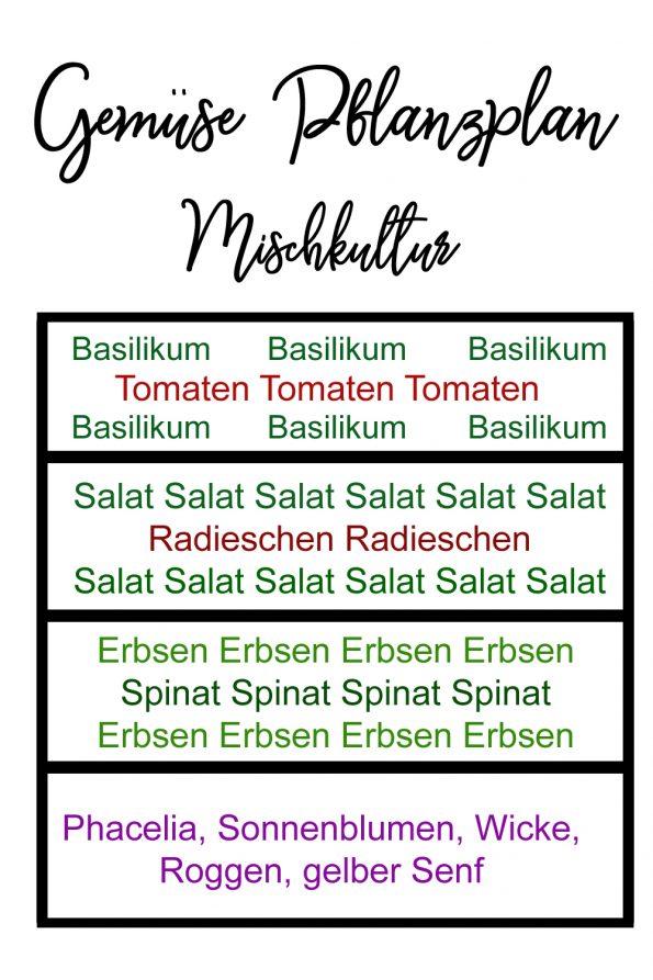 Gemüsegarten Anbauplan Gemüse Pflanzplan