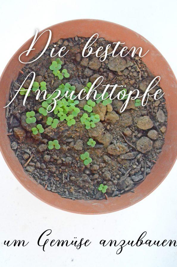 Anzuchttöpfe für Gemüse anbauen