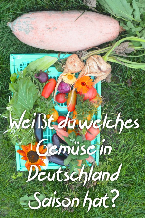 Saisonales Gemüse. Frisches regionales Gemüse zu jeder Jahreszeit