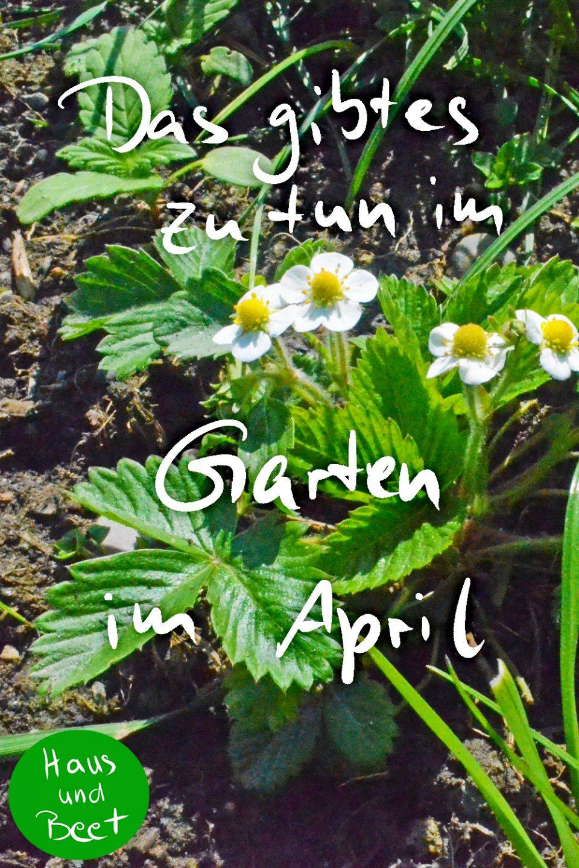 Garten im April, Gartenarbeiten