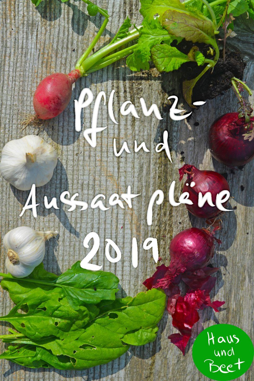 Pflanz- und Aussaatpläne 2019