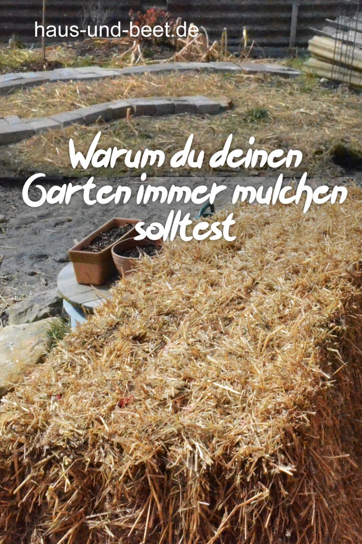 Garten mulchen zu jeder Jahreszeit
