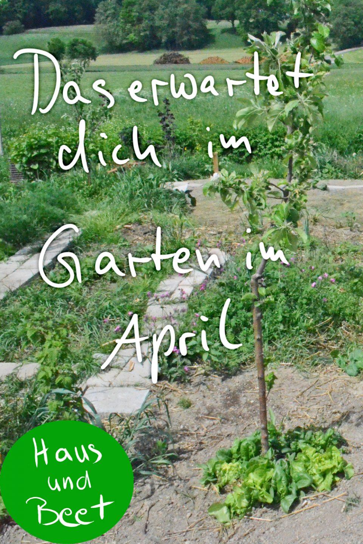 Garten im April Aufgaben