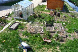 Verwilderter Garten neu gestalten