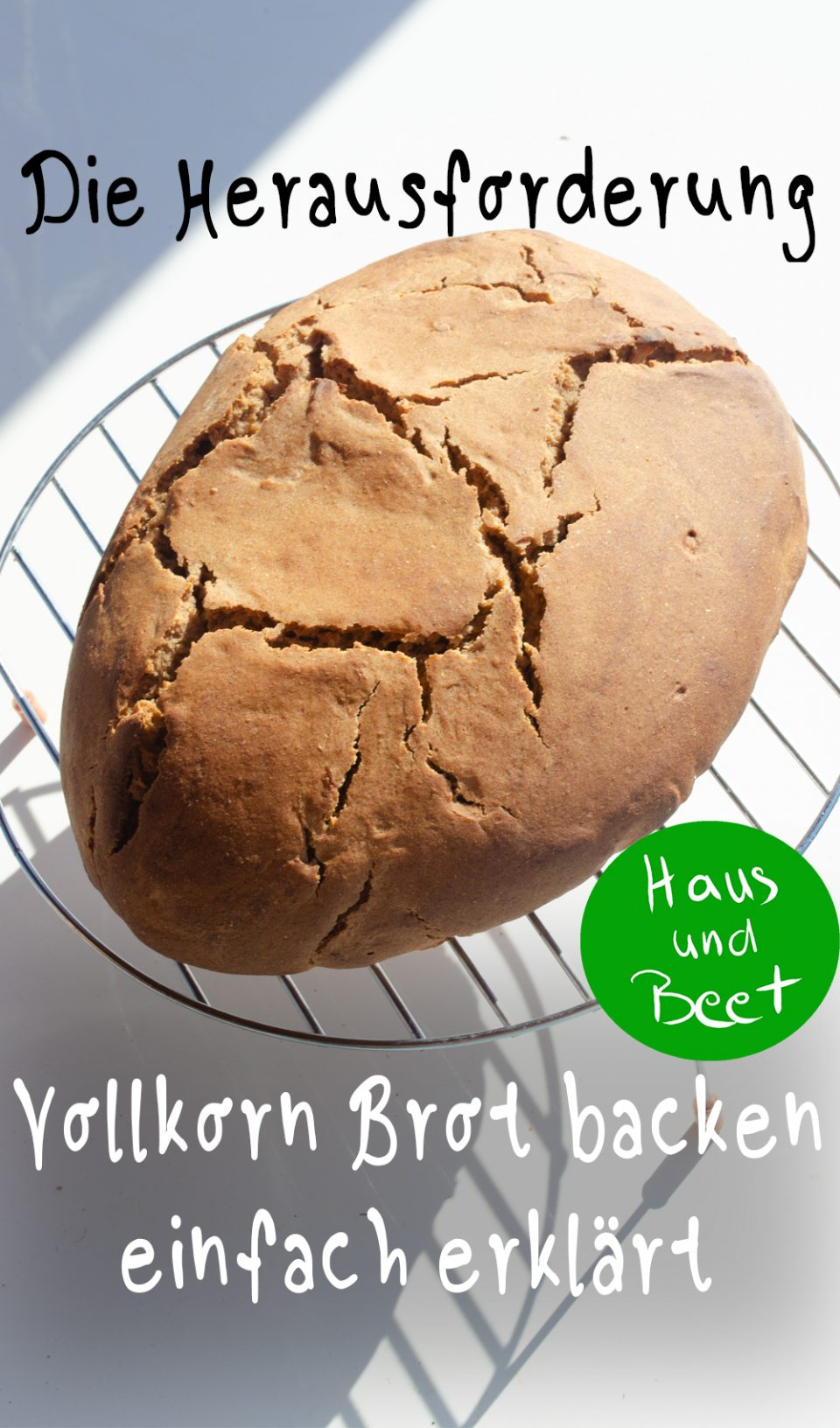 Vollkornbrot backen
