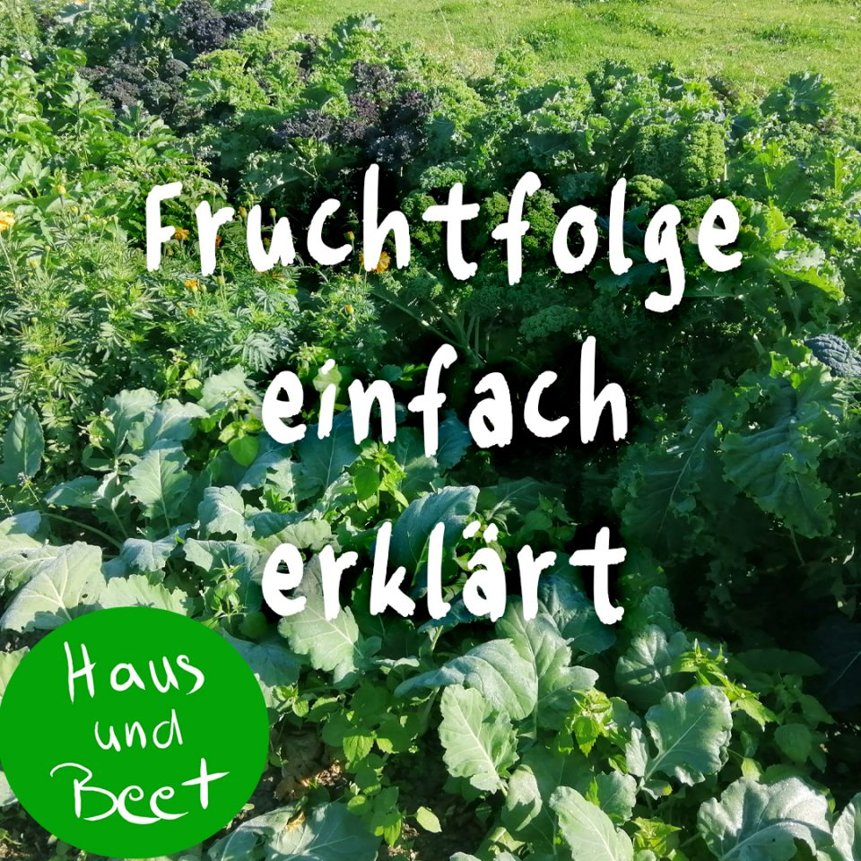Fruchtfolge