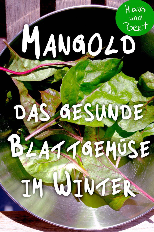 Mangold gesund