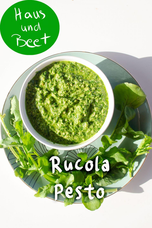 Rucola Pesto