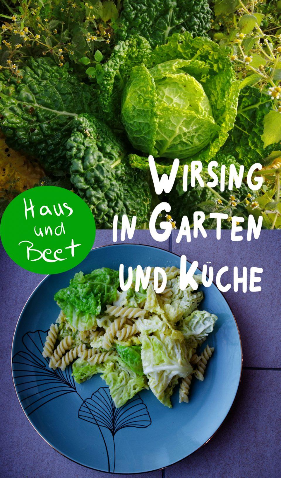 Wirsing in Garten und Küche