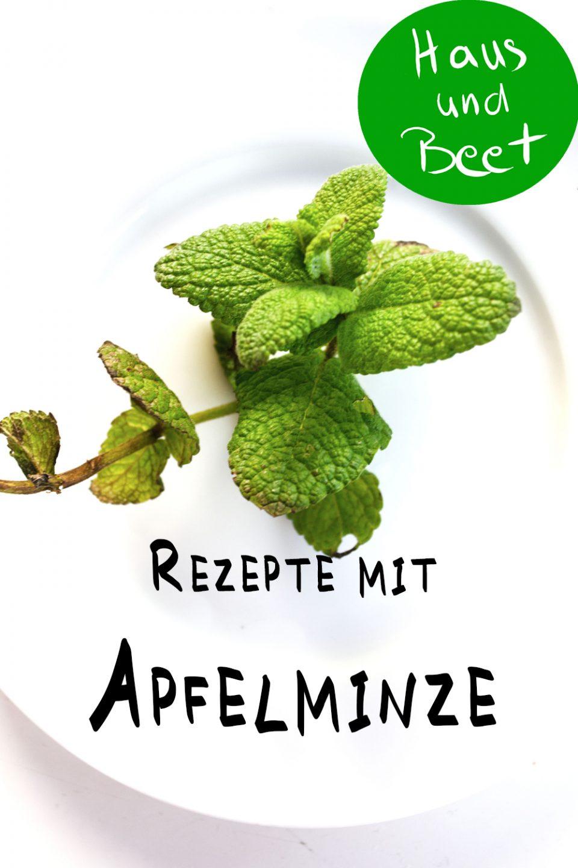 Apfelminze Rezept