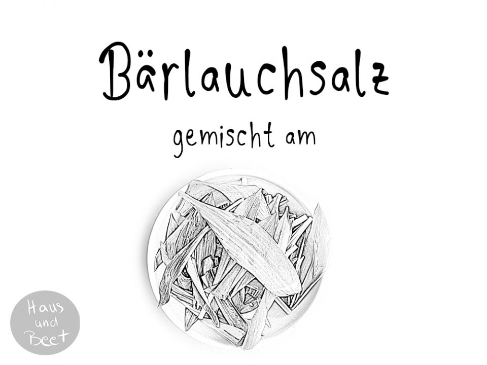 Etikett Bärlauch Salz