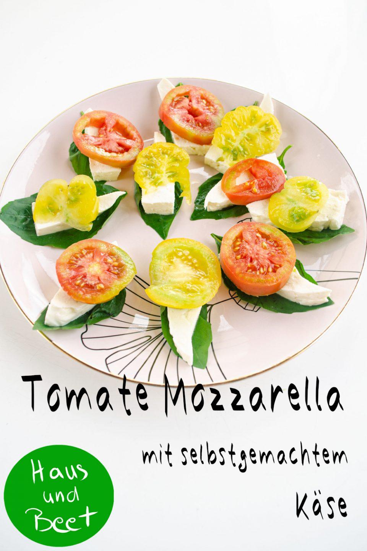 Tomate Mozzarella mit selbstgemachtem Käse