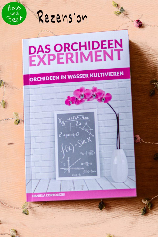 Das Orchideen Experiment Orchideen im Wasser kultivieren